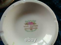 RARE'Royal Stafford''Carousel' Pastel Hydrangea Tea Set 24 Piece & Teapot