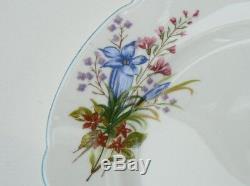 SHELLEY 14pc TEA-FOR-2 SET WITH TEA POT PRETTY WILD FLOWERS PALE BLUE TRIM 13668