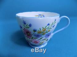 Shelley Wild Flowers 13668 Part of Tea Set + Miniature Teapots Collection of 7