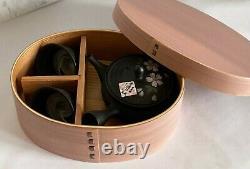 Tokoname yaki Kyusu Tea pot and cup set Gyokko paint Sakura Japan withbox japan