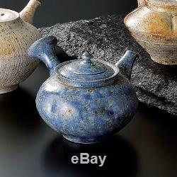 Tokoname yokode kyusu teapot TAISUKE SHIRAIWA 280cc ceramic mesh w wood box